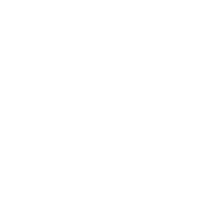 fair and equal housing